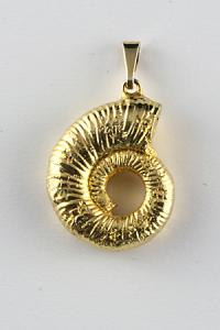 pendant ammonite gold plate